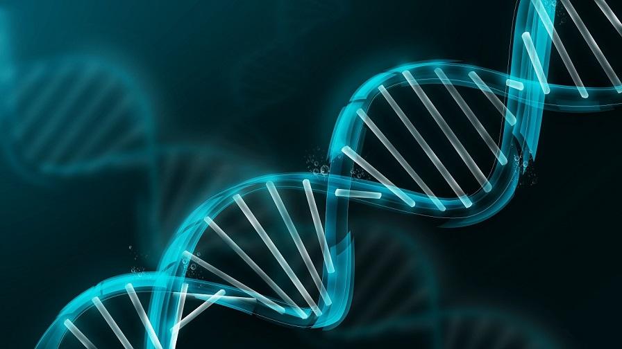 Jeden gram DNA stačí pro uložení 700 TB dat